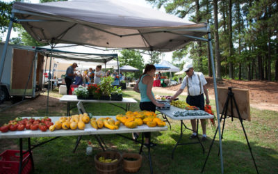 County Health Department Opens Farmers Market in Carthage