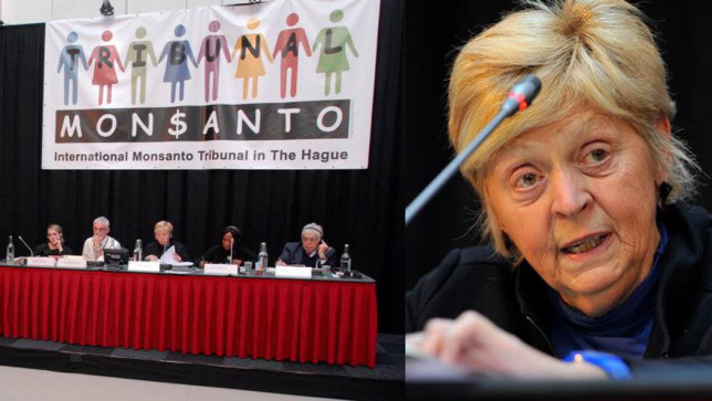 Monsanto Tribunal Judges Slam Monsanto over Violation of Human Rights (Sustainable Pulse)