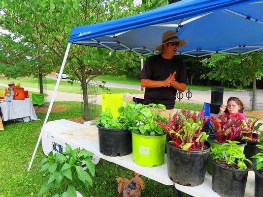 Stanbery Park to have farmers market and live music