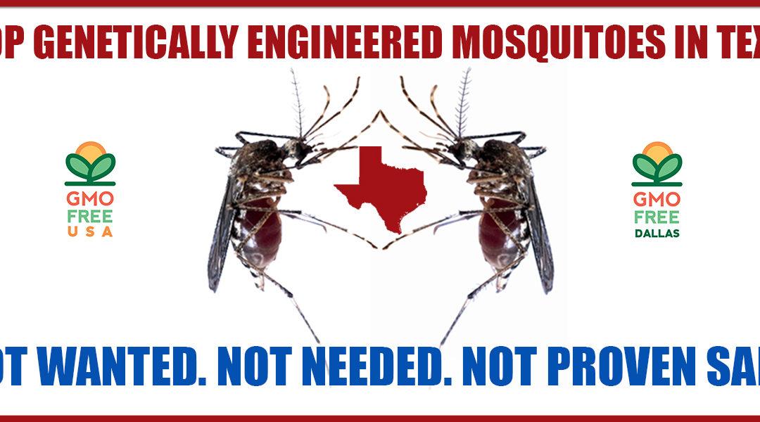Stop Genetically Engineered Mosquitoes in Texas