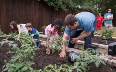 Austin Street Center garden feeds some of Dallas' most vulnerable homeless people
