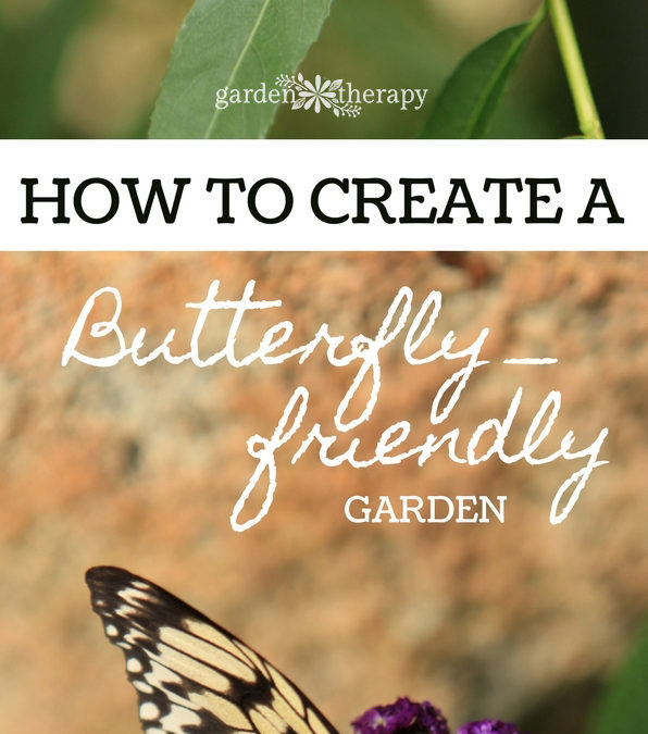 Attract Pretty Pollinators with an Irresistible Butterfly Garden