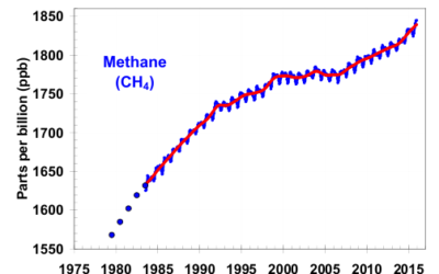 NOAA's Climate.gov Says Natural Wetlands, Tropical Agriculture Responsible For Methane Increases, Not Oil and Gas