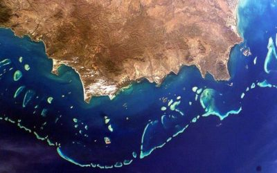 Australian government can't be trusted with Great Barrier Reef, says parliament