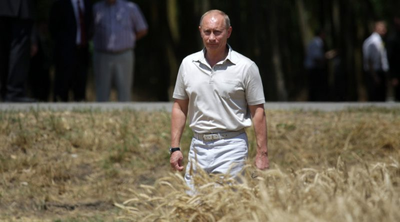 GMO Free: Russia to Become Top Producer of Organic Food
