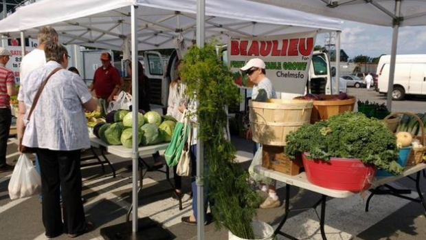 Sudbury Farmers Market working group looks at big changes for 2017 - Eco Save Earth