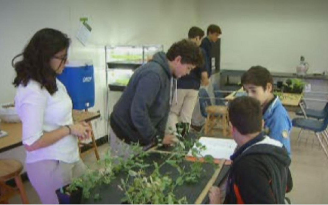 Students Working to Save Endangered Plants