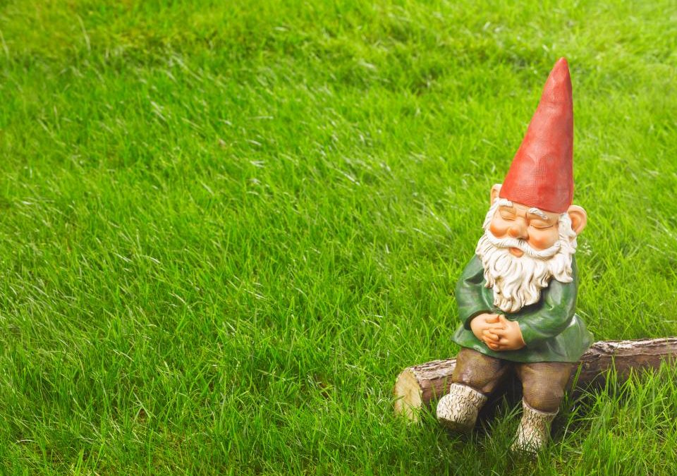 Average British garden is 50ft long, has ten types of flowers – and a lone garden gnome, study finds