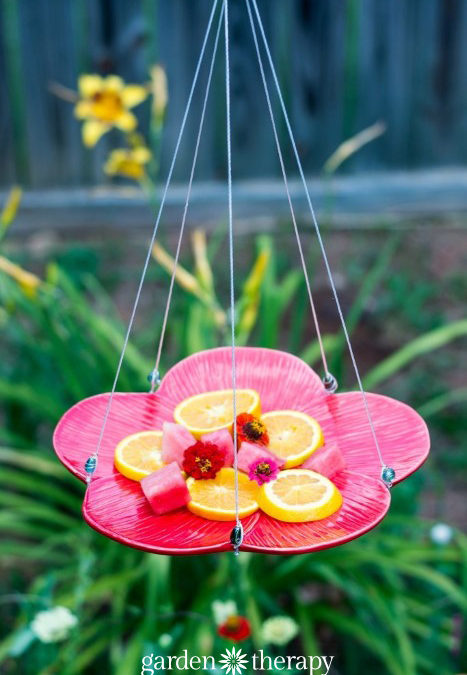 how to make homemade butterfly feeder
