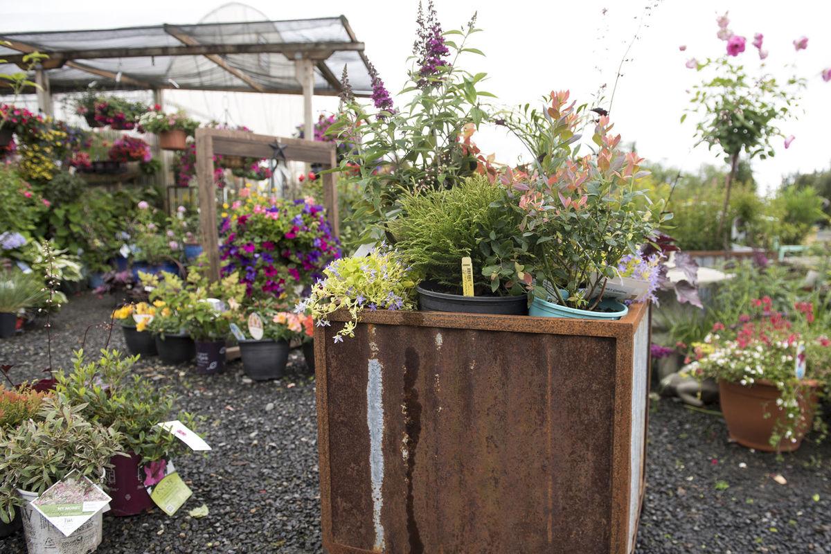 Tiny yards big impacts gardening in small spaces eco for Gardening in small spaces